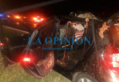Caballos en la Autopista: Ceresino involucrado en un accidente.