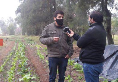 Articulación entre INTA y Gobierno de la Ciudad: 500 nuevos kit de semillas para reforzar el Pro-Huerta