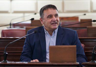 Audiencia Pública en Diputados: Gonzalez pidió también por traslados y copa de leche