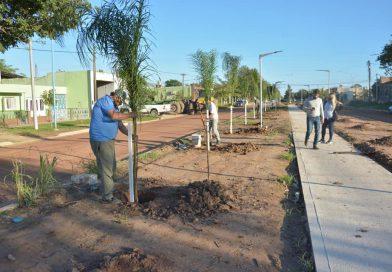 Comenzó el Plan de forestación por Av.  Vicente Casares