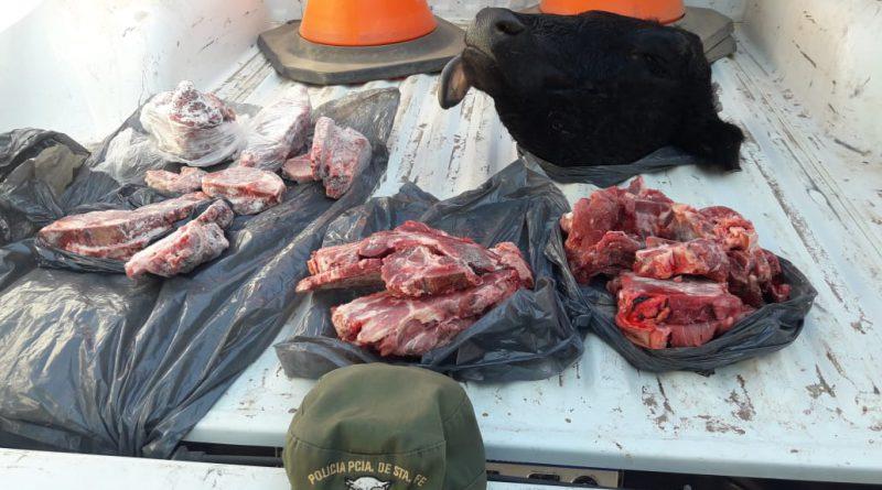 Indignación del productor al que los Pumas acusaron de faenamiento clandestino